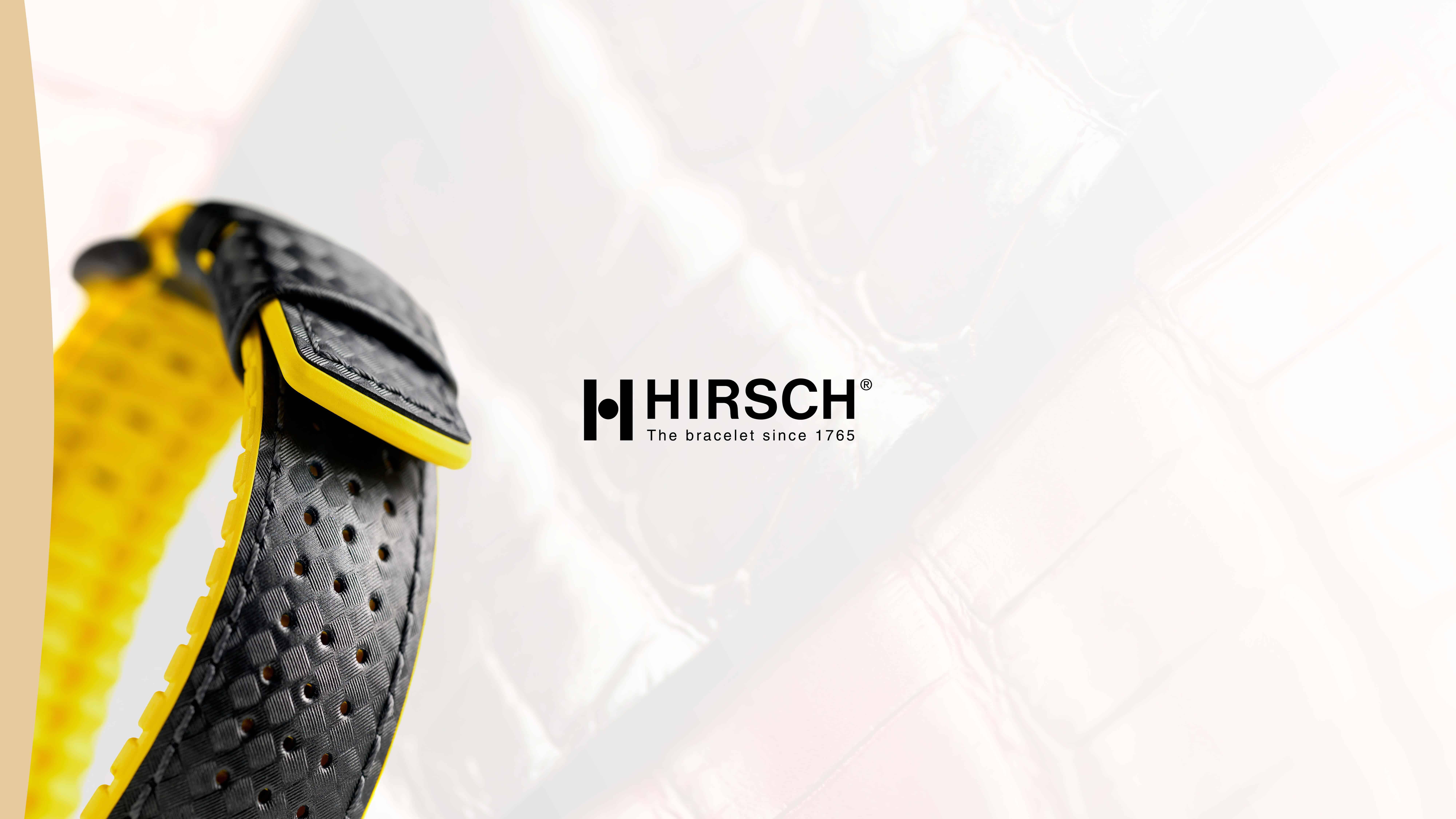 hirsch_Aufbereitung_01